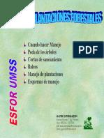 d.- Manejo Poda y Raleo