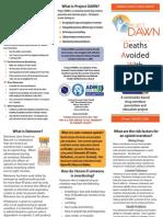 project dawn brochure0515