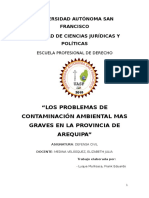 7820_CONTAMINACION_MAS_GRAVES_DE_AREQUIPA.docx