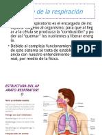 Física de la respiracion