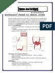 pfm.pdf