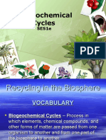 biogeochemical cycles - august 26 2015