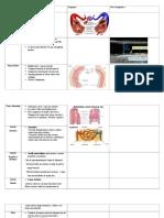 tabla vascular anatomy sono 337