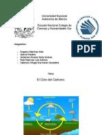 Proyecto Ciclo Del Carbono.