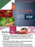 Penyuluhan Malaria