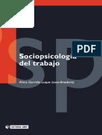Sociopsicología del trabajo