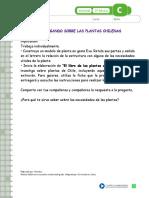 Ficha Arboles