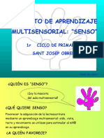 Proyecto_SENSO.pdf