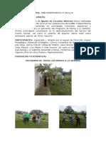 Informe Agosto de Paz