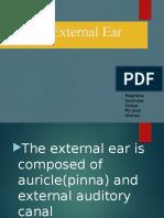 ext earrr