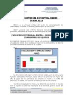 Informe combustibles Enero Junio 2016