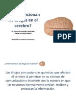 Cómo Funcionan Las Drogas en El Cerebro
