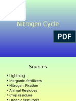 Nitrogen Cycle.ppt