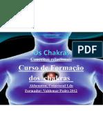 Chakras Conceitos
