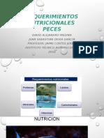 REQUERIMIENTOS NUTRICIONALES (1)