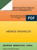 Requerimientos Nutricionales en Cultivos Permanentes