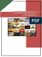 Carbohidratos Coloides Lab