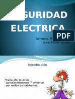 Seguridad Eléctrica Propia