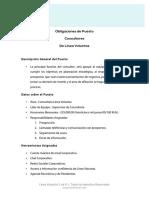 Obligaciones Del Puesto Consultor Team Lider