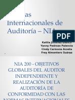 Exposición NIA 100 a 299