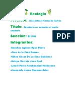 Adaptaciones Animales Al Medio Ambiente Ecologia