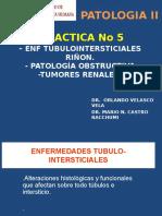 Patología II - Tubulo Intersticiales Tumor Renal