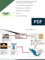 1.3 CARACTERISTICAS DEL INGENIERO.pptx