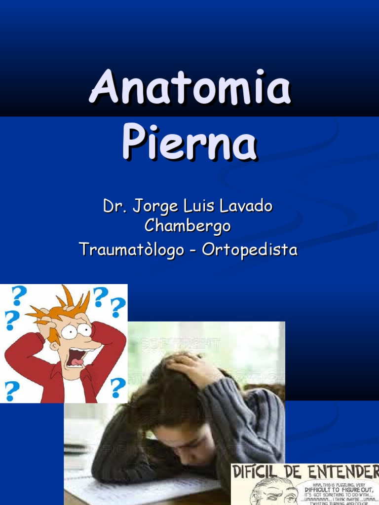 149703053 Anatomia Pierna