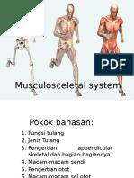 Musculosceletal System