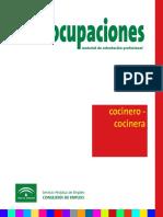 ocupaciones cocinero.pdf