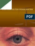 Anatomi Sistem Sensory