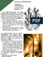 ORGANOS DE LA SOCIEDAD h.pptx