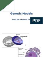 geneticmodels