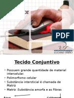 tecido_conjuntivo