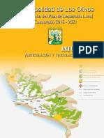 Informe Articulacion y Vinculacion Del Pdlc