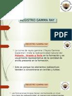 Exposicion Registro Gr. Petrofisica