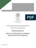 PROFESIOGRAMA-ACTUALIZACION-2016