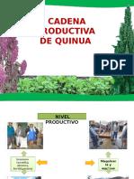 Presentación de la quinua  kenny arias.pptx