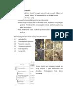 Mineral Amphibole