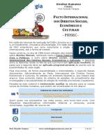 Aula 04 Pacto Internacional Dos Direitos Sociais Econmicos e Culturais 160211002307