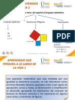 ESQUEMA_DE_CONTENIDOS_GRAN_IDEA_1  TEORIA.pdf