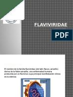 FLAVIVIRIDAE