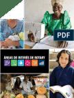 AREAS DE INTERES DE ROTARY.pdf