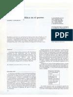 Miositis Eosinofílica en El Perro