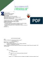 0_0_proiect_definitivat.doc