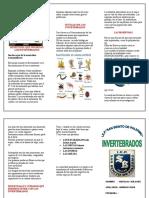 TRIPTICO 3.doc