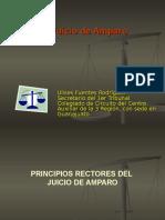 DERECHO DE AMPARO.ppt