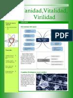 REVISTAFINAL.pdf