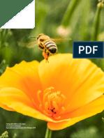 Adúriz-Bravo & Ariza (2014), Una Caracterización Semanticista de Los Modelos Científicos