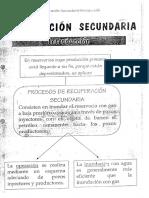 Apuntes Recuperacion Secundaria PDF (1)
